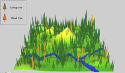 Summer School 1 Virtual Forest Simulation using R